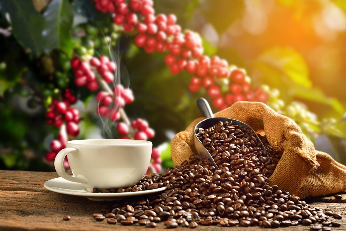 Alpha-Kaffee